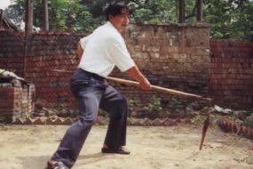 Chen Xiaoxing Baton à deux sections