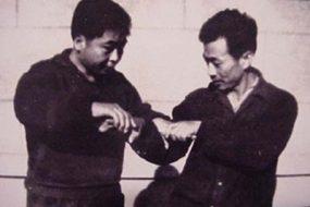 Tuishou chen zhaokui