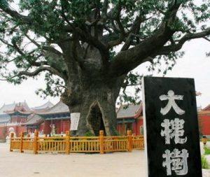 Départ de la grande migration du Shanxi